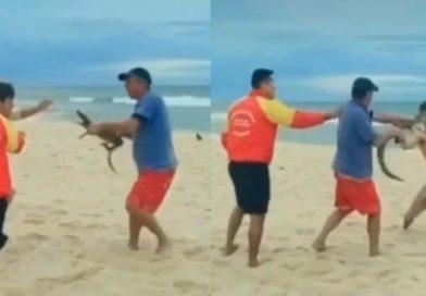 Homem se envolve em briga e usa jacaré para ameaçar pessoas